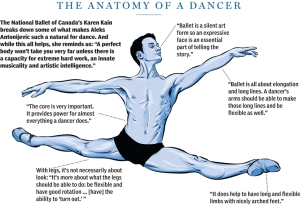 Anatomy of a dancer (Illustration by Chloe Cushman,National Post, from self-portrait by Aleksandar Antonijevic)